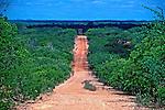 Estrada na região de Canudos, Bahia. 1997. Foto de Marcos Issa.