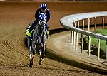 April 24, 2021: Essential Quality, the likely favorite for the Kentucky Derby works on the track at Churchill Downs for trainer Brad Cox in Louisville, Kentucky. (Scott Serio/Eclipse Sportswire/CSM)