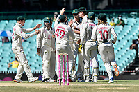 11th January 2021; Sydney Cricket Ground, Sydney, New South Wales, Australia; International Test Cricket, Third Test Day Five, Australia versus India; Australia celebrate the wicket of Ajinkya Rahane of India