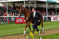 AUS-Clayton Fredericks (WALTERSTOWN DON) 2012 GBR-Land Rover Burghley International Horse Trial: FIRST HORSE INSPECTION-ACCEPTED