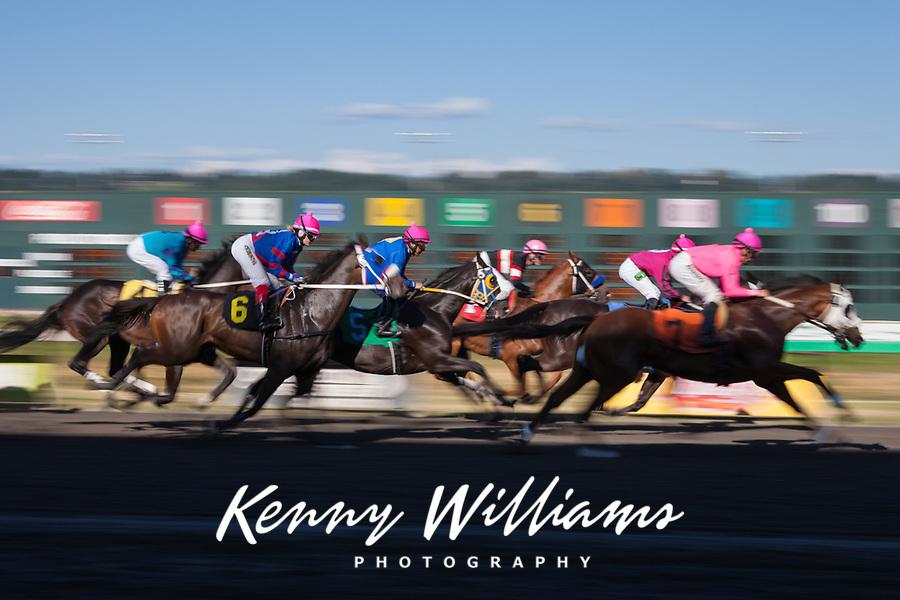 Thoroughbred Horse Racing, Emerald Downs, Auburn, Washington State, WA, America, USA.