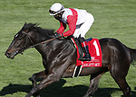 April 02, 2021: Scarlett Sky #1 ridden by Joel Rosario wins the Transylvania Stakes (Grade 3) on Keeneland Opening Day at Keeneland Race Course in Lexington, Kentucky on April 02, 2021. Candice Chavez/Eclipse Sportswire/CSM