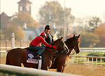 Dayatthespa, trained by Chad Brown and to be ridden by Ramon Dominguez , exercises in preparation for the 2011 Breeders' Cup at Churchill Downs on.October 30, 2011. (copyright Candice Chavez/Eclipse Sportswire)
