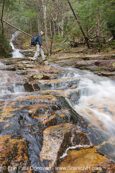 Hiker crossing Kedron Flume along the Kedron Flume Trail in Hart's Location, New Hampshire during the spring months. This waterfall is one of the many scenic waterfalls located within Crawford Notch State Park.