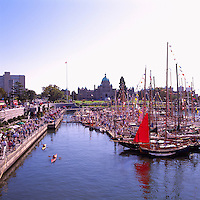 Victoria, BC, British Columbia, Canada, Vancouver Island - Pleasure Boats docked at Marina for Marine Festival, in the Inner Harbour along The Causeway (BC Parliament Buildings in background)