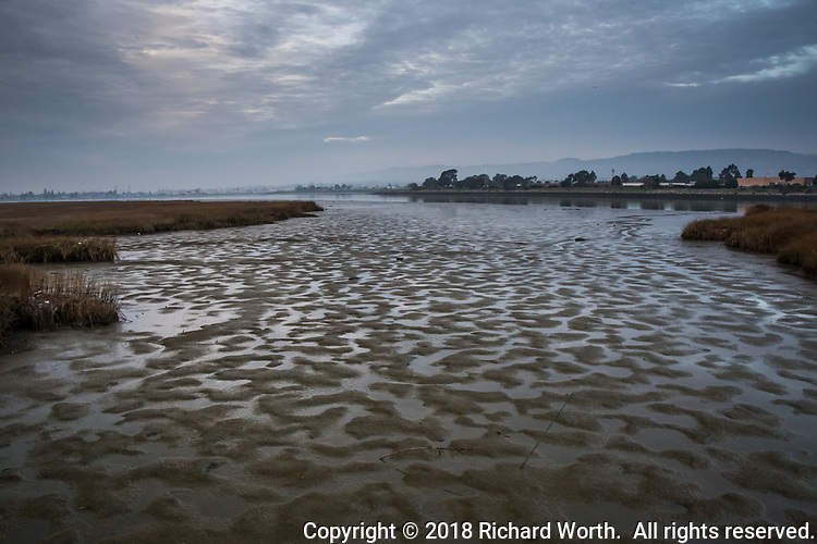 Low tide creates a natural tapestry of shapes in the muddy wetlands at MLK Regional Shoreline on San Leandro Bay,  Oakland, California.