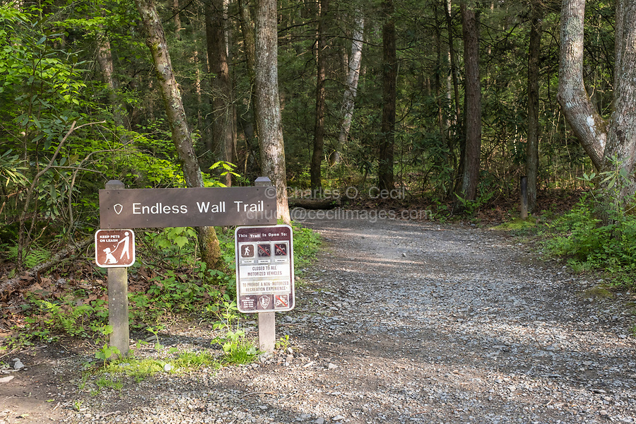 New River Gorge National Park, West Virginia.  Fern Creek Trailhead for the Endless Wall Trail.