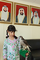 "United Arab Emirates (UAE). Abu Dhabi. Osha is the daughter of Ayesha Matar Al Mansoori. She holds a falcon on her arm at the entrance of Abu Dhabi Falconers Club. Her mother is the first woman falconer in the UAE and the only member of the Ladies Falconer Club. On the wall, the portraits of present and past rulers of Abu Dhabi, all members of the Al Nahyan royal family. (Left to right) His Highness Sheik Khalifa bin Zayed bin Sultan Al Nahyan (born 7 September 1948; referred to as Sheikh Khalifa) is the current President of the United Arab Emirates, the Emir of Abu Dhabi, the Supreme Commander of the Union Defence Force and the chairman of the Supreme Petroleum Council. His Highness Sheikh Zayed bin Sultan Al Nahyan (6 May 1918 – 2 November 2004) was the ruler of Abu Dhabi for more than 30 years. He was the founding father and the principal driving force behind the formation of the United Arab Emirates, becoming the Union's first President, a post which he held for a period of almost 33 years (1971 until his death in 2004). He is popularly referred to in the UAE as the Father of the Nation. Hi Highness Sheikh Mohammed bin Zayed Al Nahyan (born 11 March 1961), colloquially known by his initials as MbZ, is the Crown Prince of the Emirate of Abu Dhabi and Deputy Supreme Commander of the United Arab Emirates Armed Forces. Falcons are birds of prey in the genus Falco, which includes about 40 species. Adult falcons have thin, tapered wings, which enable them to fly at high speed and change direction rapidly. Additionally, they have keen eyesight for detecting food at a distance or during flight, strong feet equipped with talons for grasping or killing prey, and powerful, curved beaks for tearing flesh. Falcons kill with their beaks, using a ""tooth"" on the side of their beaks. The United Arab Emirates (UAE) is a country in Western Asia at the northeast end of the Arabian Peninsula. 20.02.2020  © 2020 Didier Ruef"