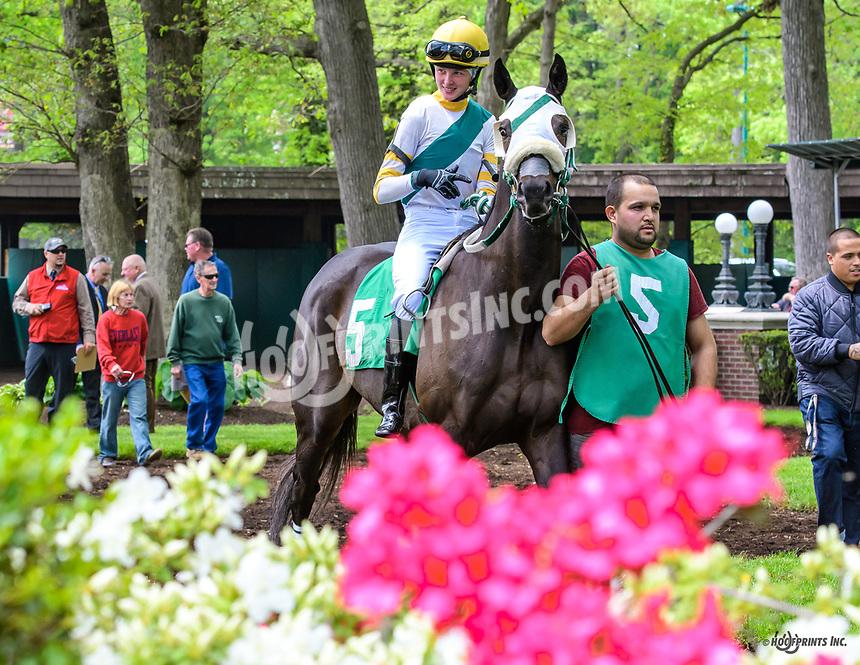 Generalist at Delaware Park on 5/4/19