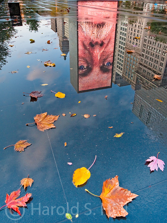 Reflections of the Crown Fountain in Millennium Park Chicago, Illinois