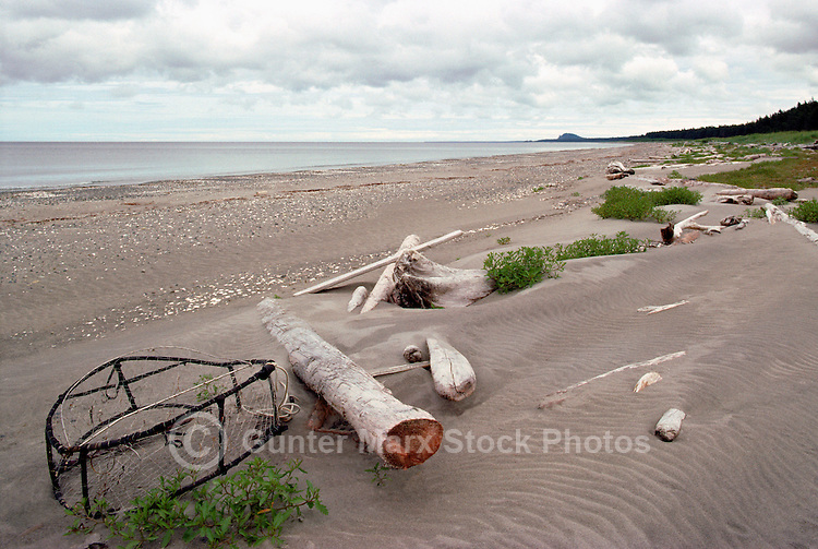 Haida Gwaii (Queen Charlotte Islands), Northern BC, British Columbia, Canada - Driftwood and Litter Debris on South Beach along McIntyre Bay, Naikoon Provincial Park, Graham Island