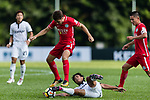 Torres Sartori Igor (Top) of Wofoo Tai Po fights for the ball with Kwok Wai Leung (Bottom) of Dreams FC during the Dreams FC vs Wofoo Tai Po match of the week one Premier League match at the Aberdeen Sports Ground on 26 August 2017 in Hong Kong, China. Photo by Yu Chun Christopher Wong / Power Sport Images