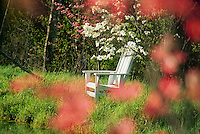 White Adirondak chair sits on dam of lake with blooming white and pink dogwood trees