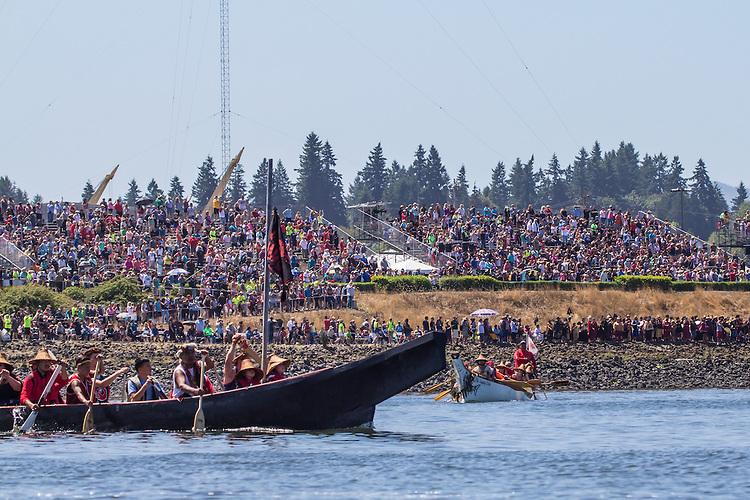 Canoe Journey, Paddle to Nisqually, 2016,  Haida canoes, Haida tribe, arriving in Olympia, Washington, 7-30-2016, Salish Sea, Puget Sound, Washington State, USA,
