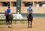 AUGUST 20, 2021: Flavien Prat and Umberto Rispoli share a moment after the Del Mar Mile at Del Mar Fairgrounds in Del Mar, California on August 20, 2021. Evers/Eclipse Sportswire/CSM