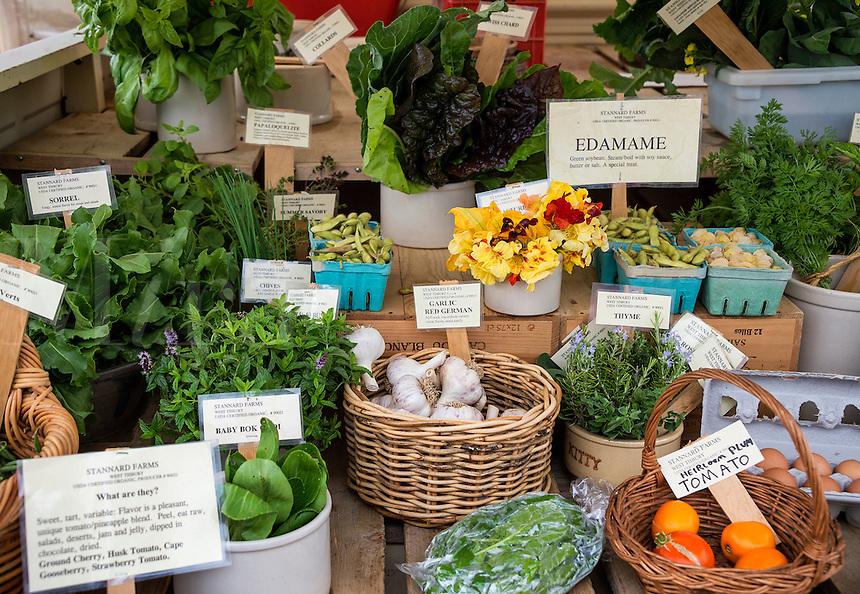 Farmers market, Martha's Vineyard, Massachusetts, USA