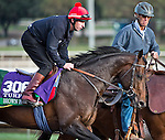 October 26, 2014:  Brown Panther, trained by Tom Dascombe, exercises in preparation for the Longines Breeders' Cup Turf at Santa Anita Race Course in Arcadia, California on October 26, 2014. Scott Serio/ESW/CSM