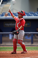 Palm Beach Cardinals catcher Jose Godoy (27) signals to the defense during a game against the Charlotte Stone Crabs on April 12, 2017 at Charlotte Sports Park in Port Charlotte, Florida.  Palm Beach defeated Charlotte 8-7 in ten innings.  (Mike Janes/Four Seam Images)