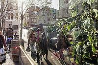 BELGIEN, 17.11.2015, Bruessel.  Das Innenstadtviertel Molenbeek ist bekannt fuer seine vielen muslimischen Zuwanderer, seine Wochenmaerkte und seine Verbindungen zu verschiedenen Terroranschlaegen.   The central district of Molenbeek is well known for its dense muslim immigrant population, Sunday's food market and links to previous terror attacks.<br /> © Arturas Morozovas/EST&OST