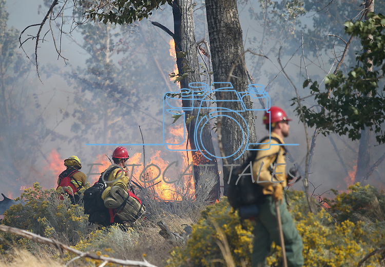 Firefighters battle a brush fire near the Fish Hatchery south of Gardnerville, Nev. on Sunday, Oct. 2, 2016. Residents in the Ruhenstroth are being evacuated.<br /> Photo by Cathleen Allison