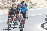 Alejandro Valverde (ESP) Movistar Team, Olympic Champion Richard Carapaz (ECU) and Adam Yates (GBR) Ineos Grenadiers just before Valverde crashes out of the race during Stage 7 of La Vuelta d'Espana 2021, running 152km from Gandia to Balcon de Alicante, Spain. 20th August 2021.     <br /> Picture: Cxcling | Cyclefile<br /> <br /> All photos usage must carry mandatory copyright credit (© Cyclefile | Cxcling)