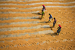 Rice mill processing by Rayhan Ahmed