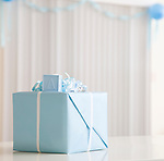 USA, Illinois, Metamora, Blue gift