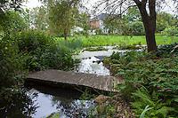 Boardwalk wooden bridge path over stream in naturalistic shade garden