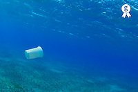 Plastic cup in the sea, Red Sea, Egypt (Licence this image exclusively with Getty: http://www.gettyimages.com/detail/82406615 )