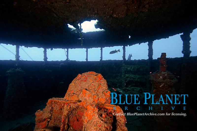 wreck, Japanese warship at World War II, Chichi-jima, Bonin Islands, Ogasawara, Tokyo, Japan, Pacific Ocean