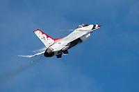 Arctic Thunder 2018 Airshow, JBER Alaska.