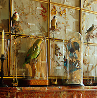 A detail illustrating the collection of dried flowers and stuffed birds displayed in the informal dining room of the chateau