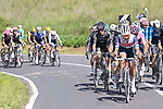 The peloton during Stage 11 of the 2021 Giro d'Italia, running 162km from Perugia to Montalcino, (Brunello di Montalcino Wine Stage), Italy. 19th May 2021.  <br /> Picture: LaPresse/Fabio Ferrari | Cyclefile<br /> <br /> All photos usage must carry mandatory copyright credit (© Cyclefile | LaPresse/Fabio Ferrari)