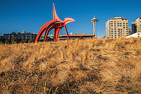 Sculptures of Seattle
