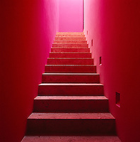 The narrow concrete staircase is suffused with light from above and painted a vibrant colour