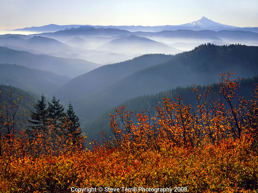View of Mt Hood from Bluebird Ridge in Gifford National Forest Washington
