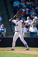 New York Yankees first baseman Ryan McBroom (73) at bat during a Grapefruit League Spring Training game against the Toronto Blue Jays on February 25, 2019 at George M. Steinbrenner Field in Tampa, Florida.  Yankees defeated the Blue Jays 3-0.  (Mike Janes/Four Seam Images)