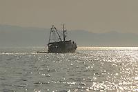 - fishing boat in navigation to the wide one of Ancona....- peschereccio in navigazione al largo di Ancona..