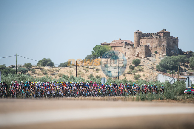 The peloton during Stage 14 of La Vuelta d'Espana 2021, running 165.7km from Don Benito to Pico Villuercas, Spain. 28th August 2021.     <br /> Picture: Unipublic/Charly Lopez | Cyclefile<br /> <br /> All photos usage must carry mandatory copyright credit (© Cyclefile | Charly Lopez/Unipublic)