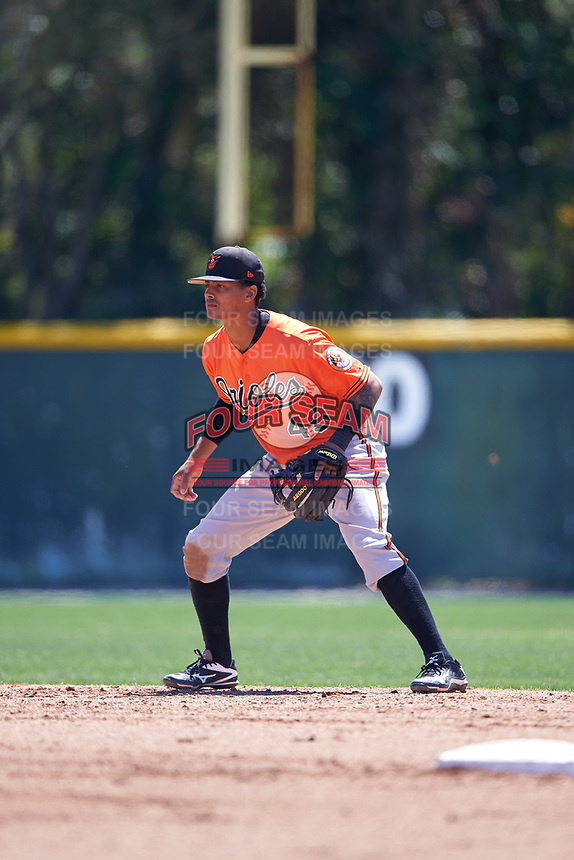 Baltimore Orioles Ricardo Andujar (49) during a minor league Spring Training game against the Minnesota Twins on March 17, 2017 at the Buck O'Neil Baseball Complex in Sarasota, Florida.  (Mike Janes/Four Seam Images)