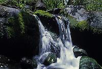 Stream and waterfall. Kauai