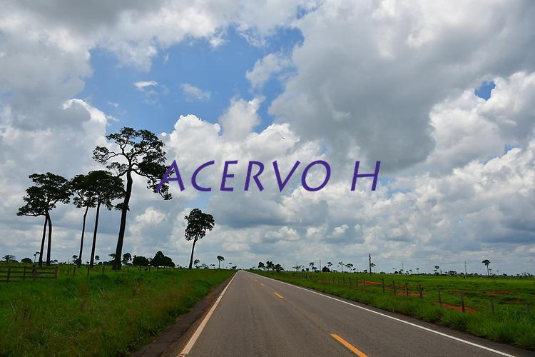 Rodovia BR-317<br /> Acre, Brasil<br /> ©Altino Machado