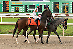January 16, 2016: Discreetly Grand with James Graham up in the Marie G. Krantz Memorial Stakes race at the Fairground race course in New Orleans Louisiana. Steve Dalmado/ESW/CSM
