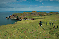 Looking towards St Abbs Head Nature Reserve from the Scottish Borders Coast, Scottish Borders