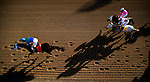 Love and Pride with Martin Garcia wins the Zenyatta Stakes (Formerly the Yellow Ribbon Stakes) at Santa Anita Park, Arcadia California on September 29, 2012.