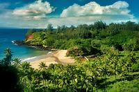 Beach on way to alerton Gardens, Kauai, Hawaii