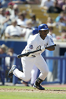 Wilkin Ruan of the Los Angeles Dodgers bats during a 2002 MLB season game at Dodger Stadium, in Los Angeles, California. (Larry Goren/Four Seam Images)