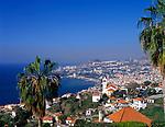Portugal, Madeira, Funchal | Portugal, Madeira, Funchal
