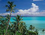 Bora Bora, French Polynesia: Coconut Palm trees (Coco nucifera) above the tropical blue waters of Bora Bora lagoon and Taahina Bay
