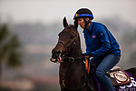 DEL MAR, CA - OCTOBER 28:   Imperative, owned by Loooch Racing Stable & Imaginary Stables and trained by Robert B. Hess Jr., exercises in preparation for the Breeders' Cup Las Vegas Dirt Mile at Del Mar Thoroughbred Club on October 28, 2017 in Del Mar, California. (Photo by Alex Evers/Eclipse Sportswire/Breeders Cup)